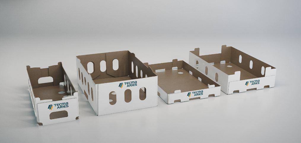 Cases & trays